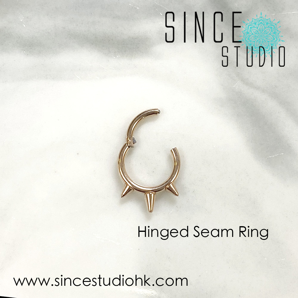 Rock Style Hinged Seam Ring open